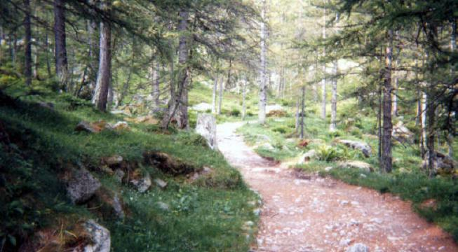 Valle delle Orchidee